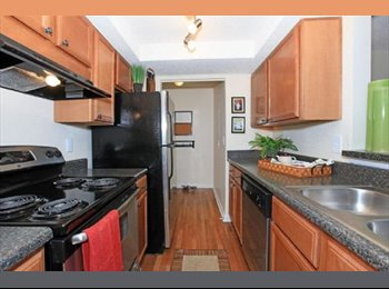 EasyRoommate US - 2bd/2bath AWESOME 1000sq ft. Apt. Roomate Wanted $550 total - Charleston, Charleston Area - $560 /mo