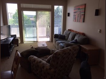 One Room Available in  Beautiful 2 BR Apt Near UW