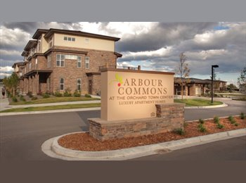 EasyRoommate US - Roommate wanted for Arbour Commons  - Westminster, Denver - $755 /mo