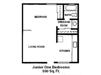 Room for Rent in Jr. 1 bedroom apartment