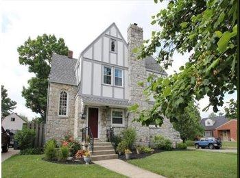 EasyRoommate US - Basement Studio Apartment (includes separate entrance, bathroom, laundry, etc.) - Dayton, Dayton - $700 /mo