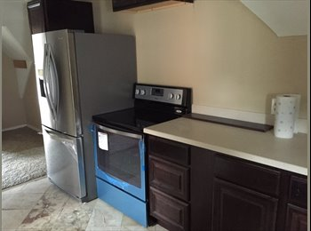 EasyRoommate US - Gorgeous House for students attending College - New Haven, New Haven - $750 /mo