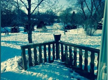 EasyRoommate US - Roomate wanted to share house - New Brighton Area, Minneapolis / St Paul - $700 /mo