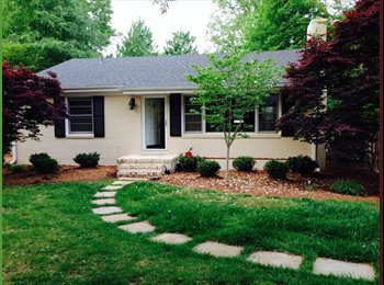 EasyRoommate US - Room available in great house 2 miles from NCSU and downtown Raleigh! - Raleigh, Raleigh - $550 /mo