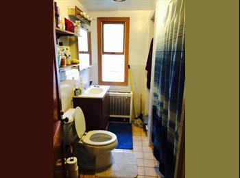 EasyRoommate US - ROOM for rent in great WEST END apartment - Hartford, Hartford Area - $576 /mo