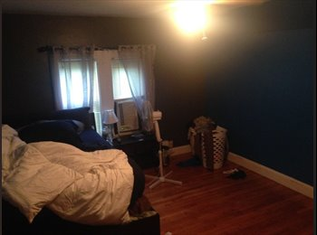 Easy Going Responsibel Male roommate Needed