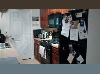 1 Bedroom For Rent--Near Gunston, Arlington--Move-in Date...