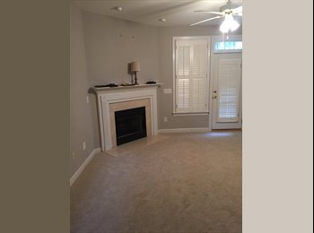 Roommate wanted! Young professional!