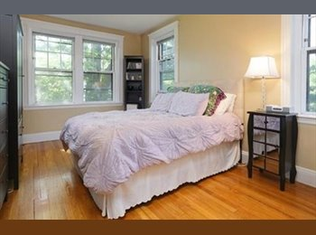 EasyRoommate US - Large Available onebedroom in Two bedroom Apartment   - Allston, Boston - $500 /mo