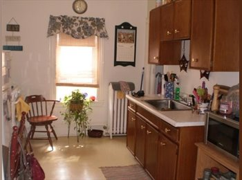 EasyRoommate US - Great location, 1 bedroom, 1 bath apartment for Rent.  - Allston, Boston - $550 /mo