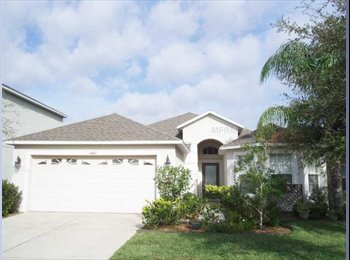 2 rooms for rent in New Tampa