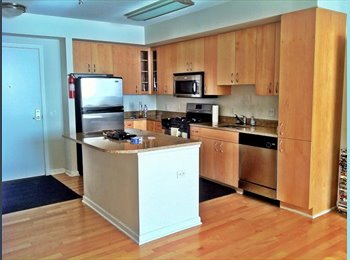Room for Rent in The L @ City Vista - $1175 per month