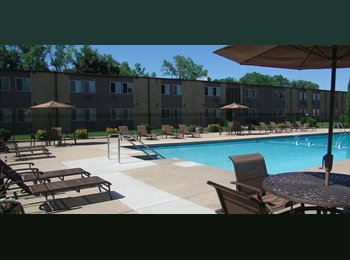 EasyRoommate US - Looking for a Male Roommate - Madison, Madison - $420 /mo