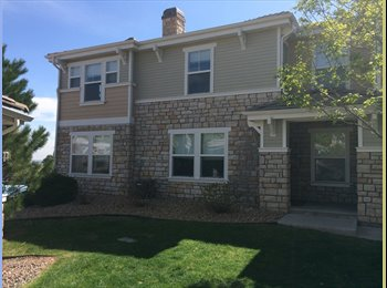 Roommate wanted for large town home