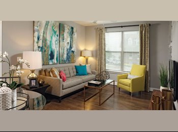 EasyRoommate US - Gorgeous Master Bedroom Near Several Universities - Silver Spring, Other-Maryland - $995 /mo