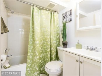 EasyRoommate US - $1500 / 2br - 900ft 2 - 2 Bed/1 Bath Walk to Metro Utilities Incld (Glenmont) - Silver Spring, Other-Maryland - $1,500 /mo