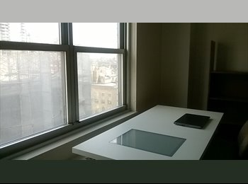 Manhattan Apartment Windows in every Room 77th York Ave