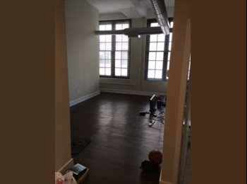 1 room available in 2 bedroom loft apartment