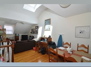 EasyRoommate US - lovely apartment - Allston, Boston - $1,000 /mo
