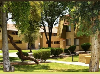 Sharing Apartment North Phoenix Easy access to 101 and 51...