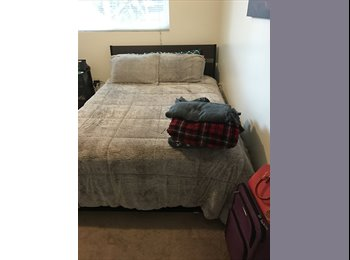Room for Rent In Beautiful Clairemont House!  OPEN HOUSE...
