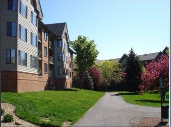 Burlington appartments