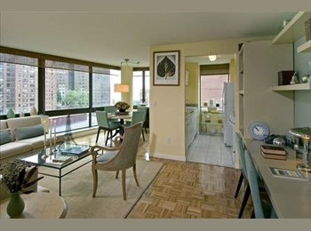 EasyRoommate US - Live in a good area - Near North Side, Chicago - $650 /mo