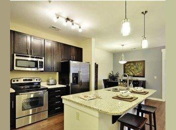EasyRoommate US - Immaculate well kept 3 bedroom first floor available  - Charleston, Charleston Area - $1,850 /mo