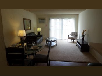 Roommate needed for apartment across the street from UCLA