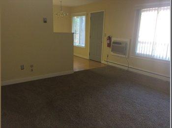 EasyRoommate US - 2 bedroom condo  - Ann Arbor, Ann Arbor - $450 /mo