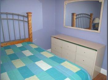 EasyRoommate US - furnish room in boca - Boca Raton, Ft Lauderdale Area - $700 /mo