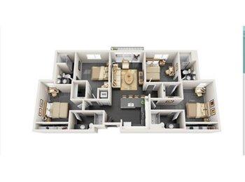 EasyRoommate US - Vertex Apartments - Tempe, Tempe - $760 /mo