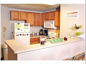 $600 Dinkytown 4BR sublease!