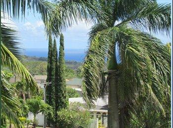 EasyRoommate US - Kalaheo one bed room view apartment - Kauai, Kauai - $1,600 /mo