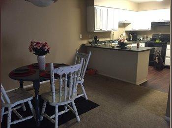 EasyRoommate US - I need a third roommate  - Indianapolis, Indianapolis Area - $332 /mo