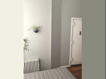 EasyRoommate US - Room in Bushwick - Bushwick, New York City - $550 /mo