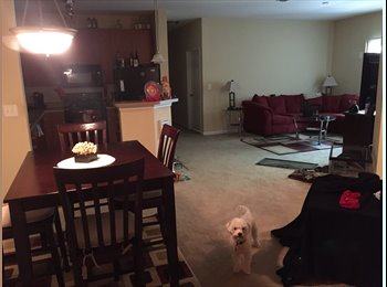 Room for rent in furnished apartment