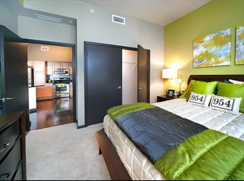 Roommate wanted in luxury apartment in downtown fort...