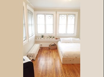 EasyRoommate US - Bright and Spacious Room off of Park Ave! - Park Avenue, Rochester - $550 /mo