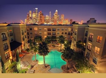 Luxury Montrose Apartment Room For Rent