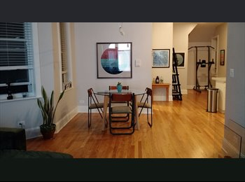 $700 1-BR Available 6/1 in Pilsen (17th and Wood St)...