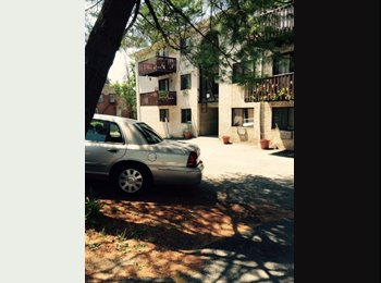 EasyRoommate US - Odell Av - Yonkers, Westchester - $800 /mo