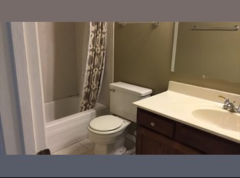 6224 Trinity Drive 2A Rooms for Rent