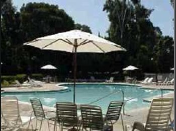 EasyRoommate US - PROFESSIONAL ROOMMATE WANTED: FEMALE PREFERRED - Ocean Beach, San Diego - $950 /mo