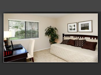 EasyRoommate US - Roommate wanted Master suit with bathroom.  - Santa Rosa, Northern California - $860 /mo