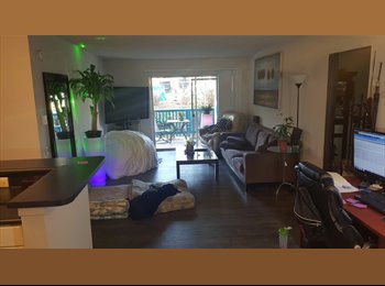 EasyRoommate US - 1 private bedroom / bath close to Bay in Pacific Beach. New Apartments - Pacific Beach, San Diego - $900 /mo