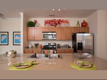 EasyRoommate US - Canopy Apartments 1/1 in 2/2 (largest 2 bedroom) - Gainesville, Gainesville - $690 /mo