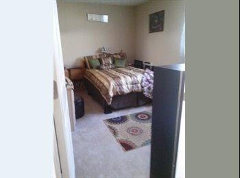 Unique suite of 2 Rooms