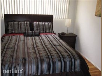 EasyRoommate US - Excellent 1 bedroom Apartment - South Boston, Boston - $2,400 /mo