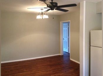 EasyRoommate US - Cute Fairmount Apartment! - Downtown, Fort Worth - $367 /mo